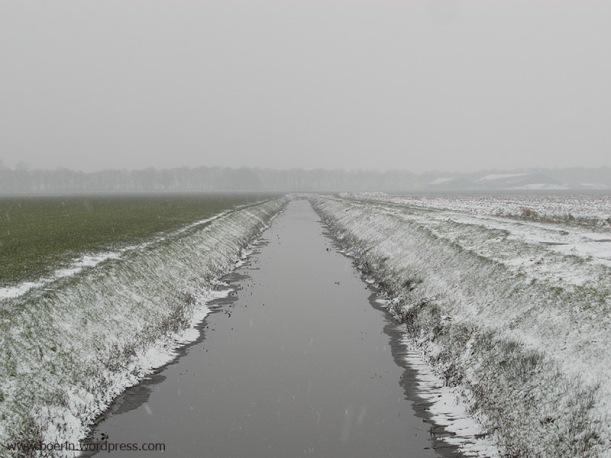 sneeuw 04012016 (6)