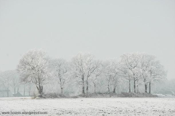 jan-2017-sneeuw-5